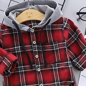 2pcs Pant and Hooded Shirt Set